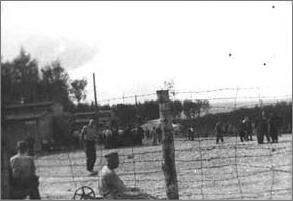 Vue d'ensemble du petit camp de Buchenwald