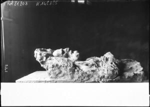 buste de Frédéric PASSY, 1912 - Agence Rol
