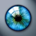 Iris | webdesign-tutoriaux.com
